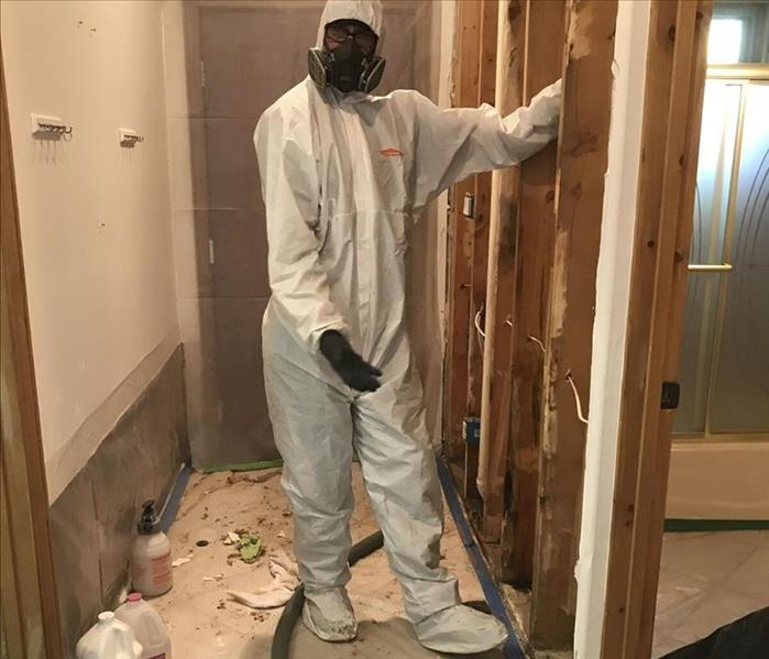 Mold Remediation The Importance of Mold Remediation for your Home in Rio Rancho or Sandoval County