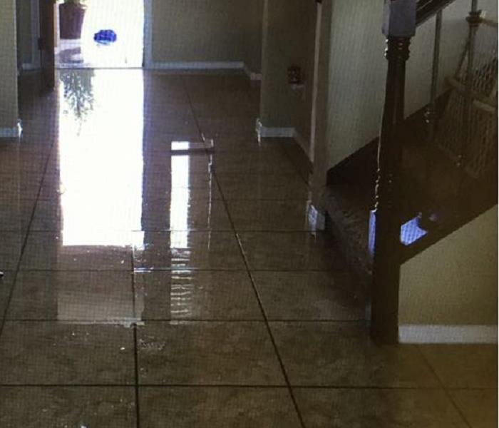 Water Damage Water Damaged Carpet – Can it be Saved?