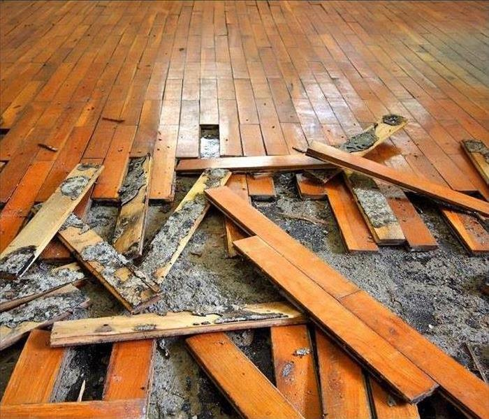 Water Damage What To Do After Wooden Floors Get Wet